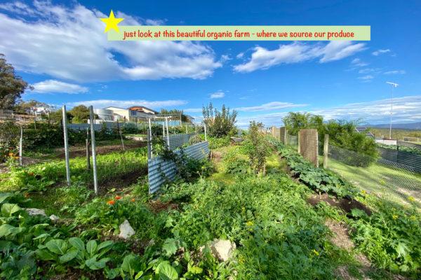 Local-organic-farm--Bruny-Island-Accommodation-Package-Tasmania---Free-Spirit-Pods