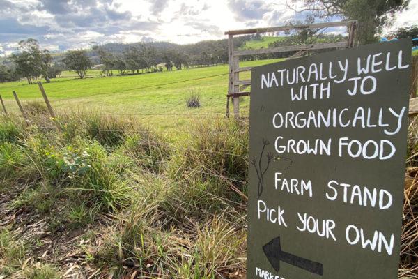 Local-organic-farm-sign-Bruny-Island-Accommodation-Package-Tasmania---Free-Spirit-Pods