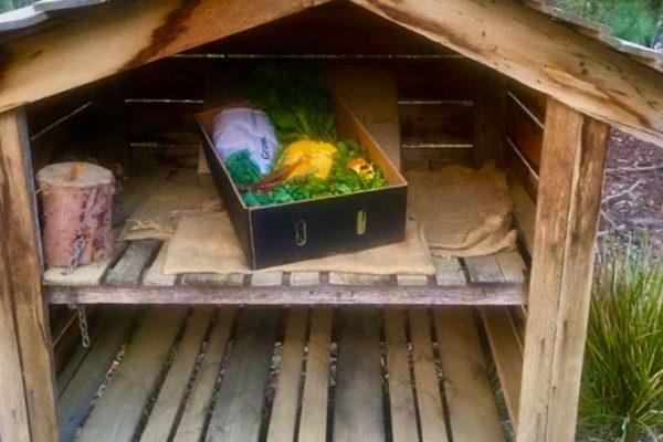 Local-organic-veggie-box-collection-box-Bruny-Island-Accommodation-Package-Tasmania---Free-Spirit-Pods
