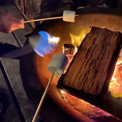 Roasting-marshmallows-Bruny-Island-Accommodation-Package-Tasmania---Free-Spirit-Pods